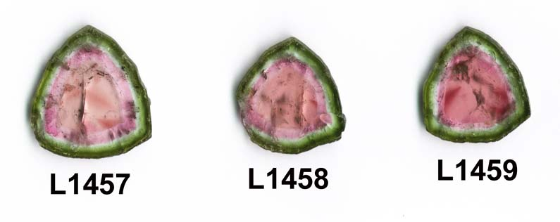 Item #L1457 - Watermelon Tourmaline Large Slice Pendant